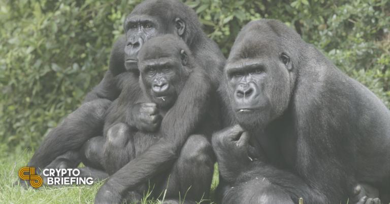 Los gorilas de NFT queman $ 90,000 Ethereum por minuto