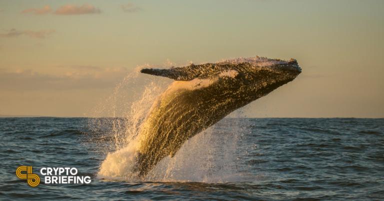 Polígono se reúne a medida que las ballenas se lanzan a comprar