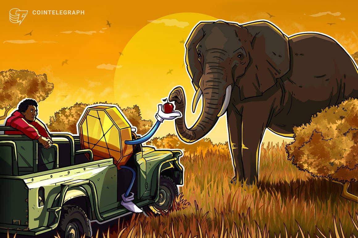 El mercado de criptomonedas de África ha crecido más del 1,200% desde 2020, según Chainalysis