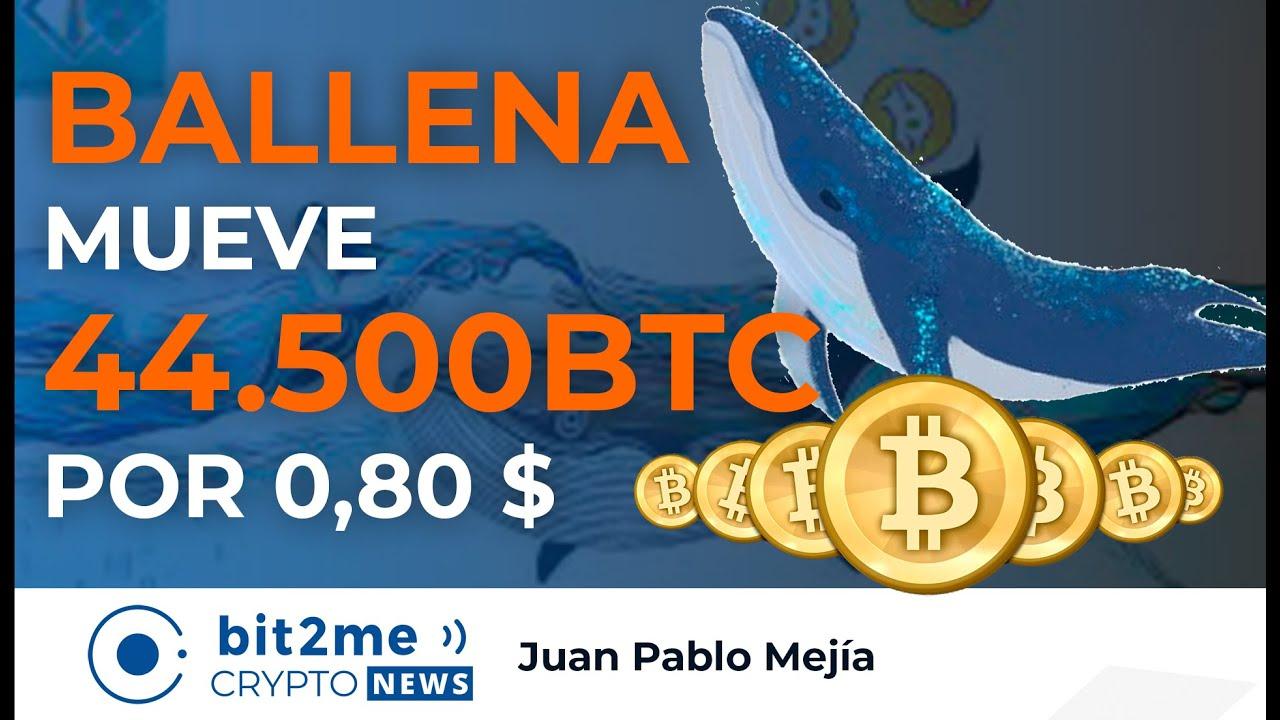 🔵 🐳 NOTICIAS CRIPTOMONEDAS HOY – BALLENA Mueve 44.500 BTC por 0,80 DÓLARES – BITCOIN legal en CUBA