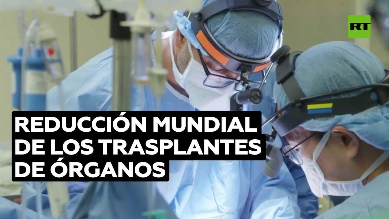 El número de trasplantes de órganos se reduce en todo el mundo @RT Play en Español