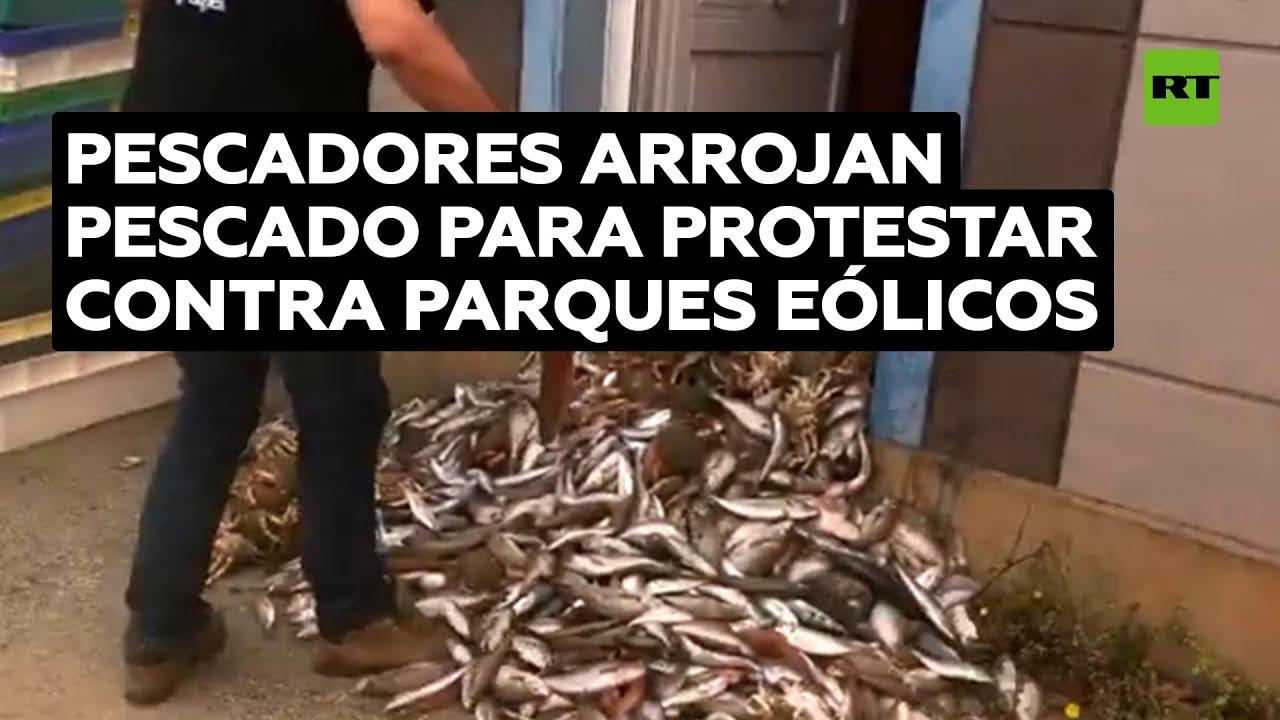 Pescadores llenan una administración francesa con pescados para protestar contra parques eólicos