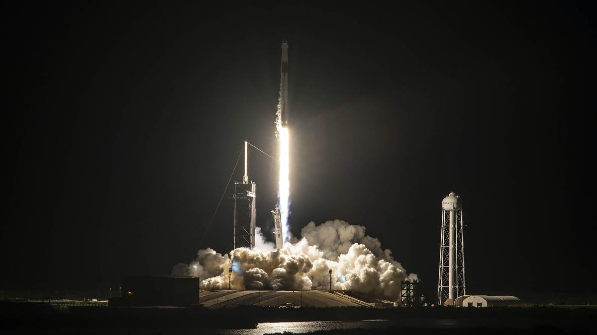 SpaceX lanzó cuatro turistas a la órbita terrestre por primera vez: ¿qué harán ahí arriba?