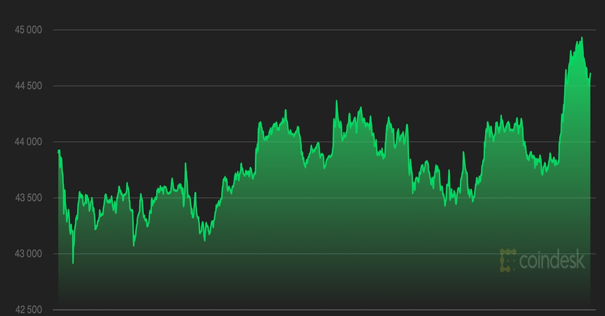 Bitcoin aumenta incluso cuando el indicador muestra un sentimiento bajista extremo – CoinDesk