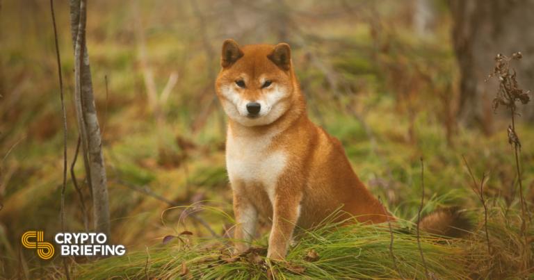 Dos métricas en cadena para cronometrar el próximo movimiento de Dogecoin