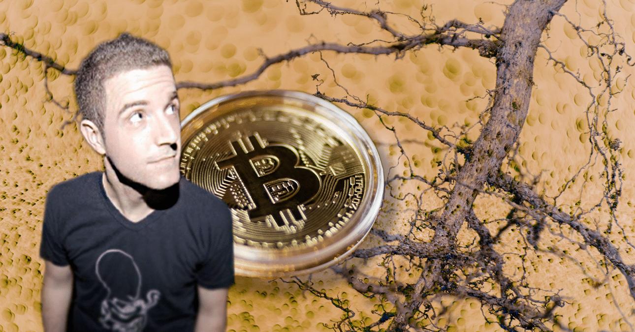 Taproot, firmas Schnoor y los cambios en Bitcoin explicados en Blockchain Summit Latam