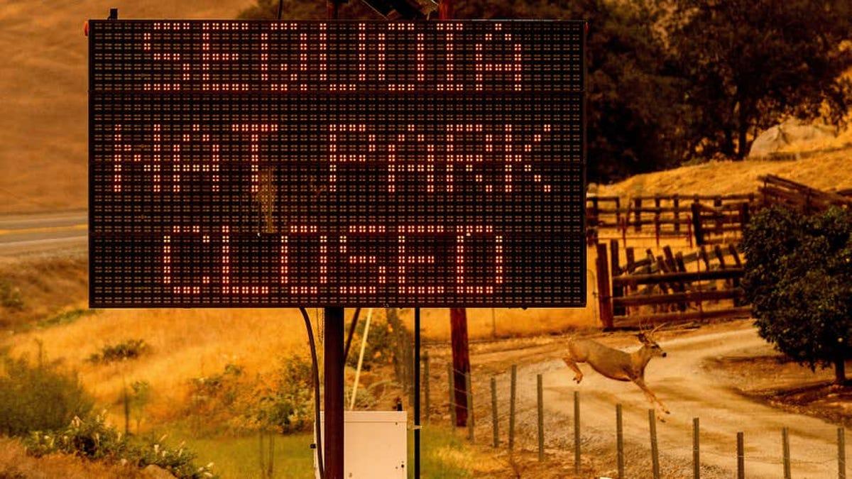 Evacúan por incendio el parque de las Sequoias de EEUU