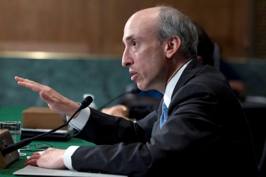 Crypto necesita regulación si va a sobrevivir, dice SEC Boss