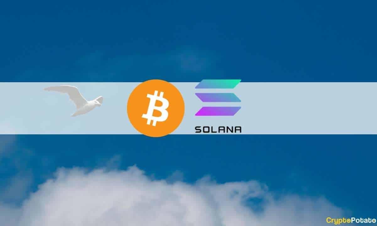 Bitcoin Roza Los 53k USD Antes De Caer Y Arrastrar Al Top10… Menos A Solana