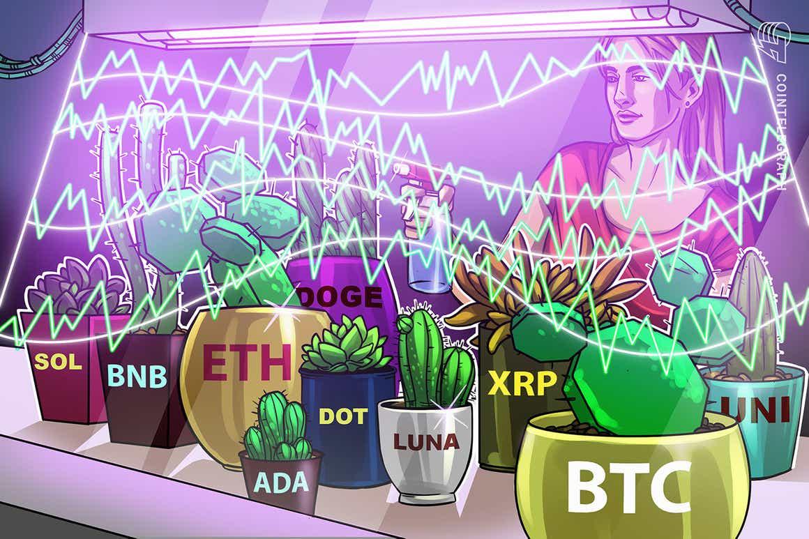 Análisis de precios del 11 de octubre: BTC, ETH, BNB, ADA, XRP, SOL, DOGE, DOT, LUNA, UNI