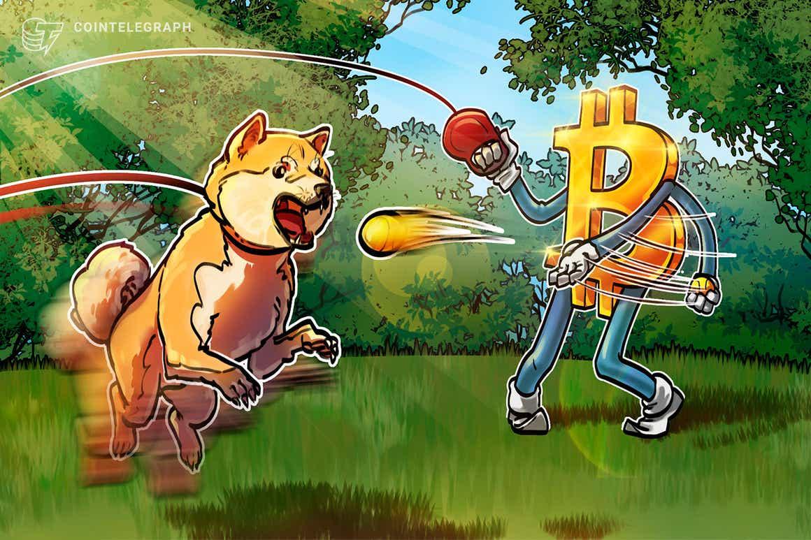 Dogecoin pierde 70% contra Bitcoin durante 6 meses de patrocinios de celebridades hacia la moneda