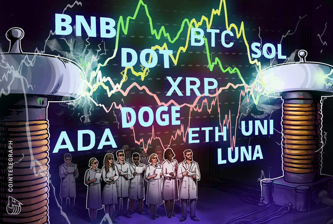Análisis de precios del 13 de octubre: BTC, ETH, BNB, ADA, XRP, SOL, DOGE, DOT, LUNA, UNI