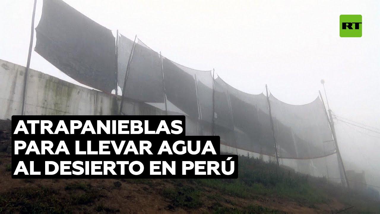 Los atrapanieblas proporcionan agua a las colinas desiertas de Lima @RT Play en Español