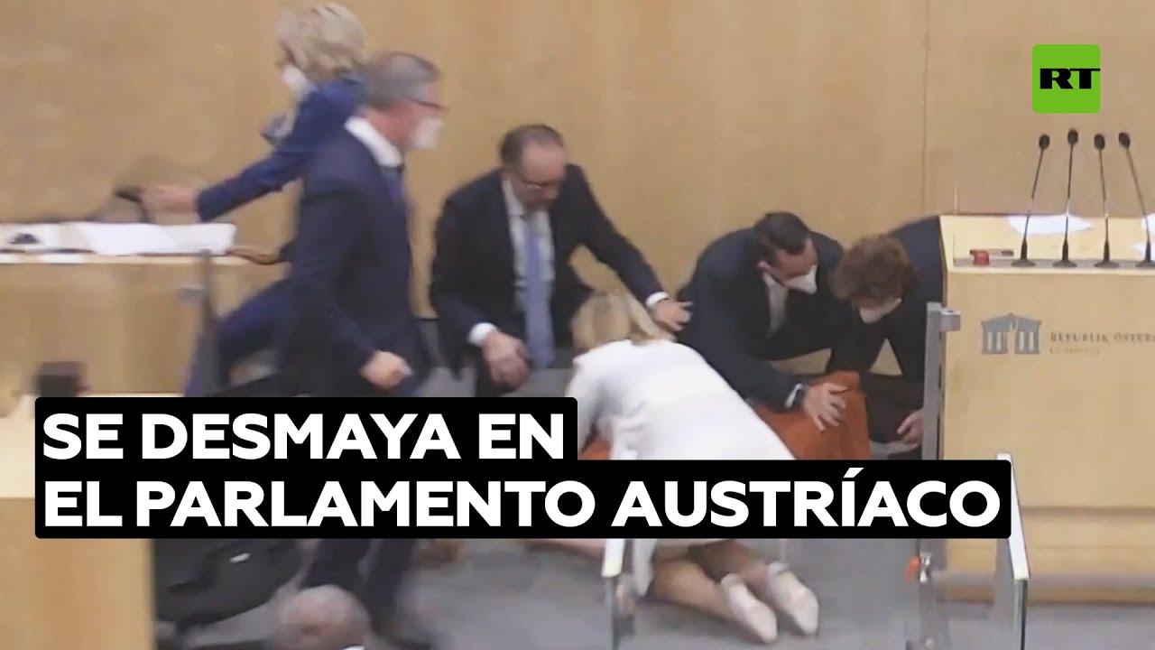 Se desmaya la miembro del Consejo Nacional de Austria durante su discurso al Parlamento