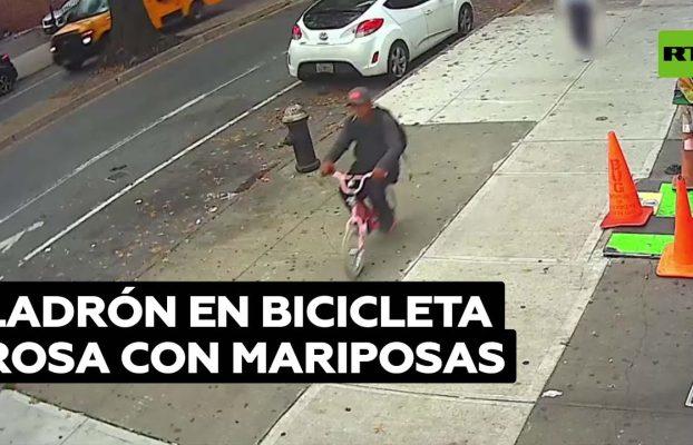 Buscan a un ladrón en una bicicleta infantil tras robarle el celular a una niña @RT Play en Español