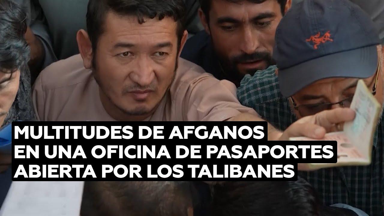 Afganos acuden a una oficina de pasaportes reabierta por los talibanes