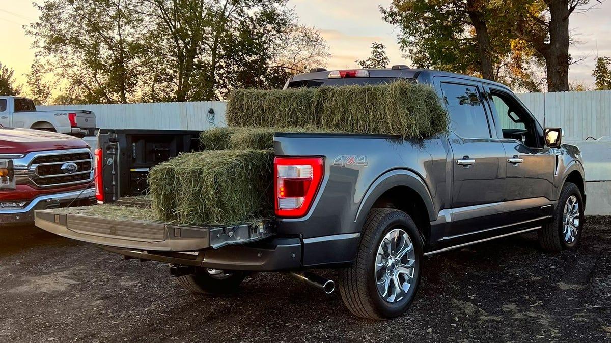 La nueva camioneta de Ford tiene intermitentes-báscula