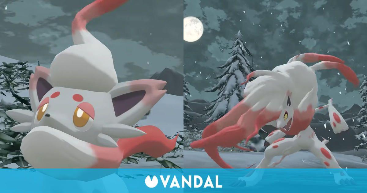 Leyendas Pokémon Arceus presenta un nuevo vistazo a las formas Hisui de Zorua y Zoroark