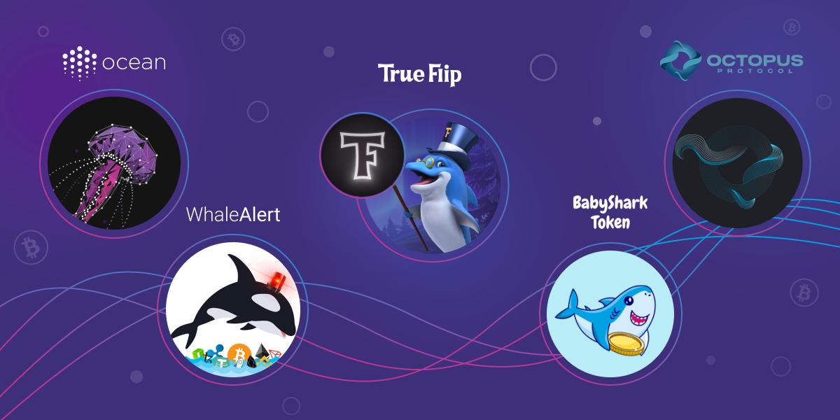 Camarones, tiburones, ballenas y otros peces en Crypto
