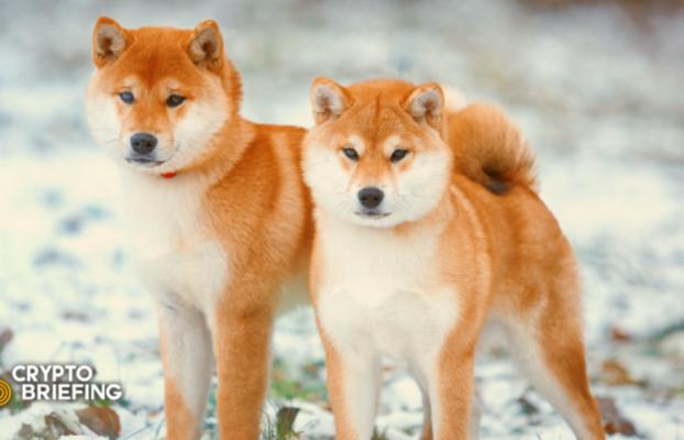 Olvídese de Bitcoin y Ethereum: los comerciantes de criptomonedas se están acumulando en monedas para perros