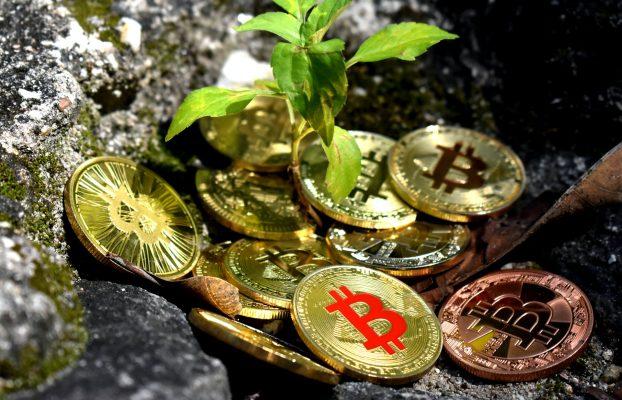 Minería de Bitcoin vs.  El mundo: BTC lidera la energía sostenible