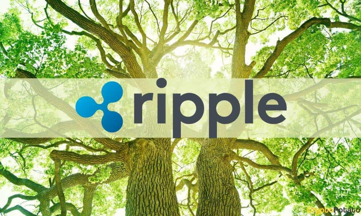 Ripple Y Nelnet Invierten 44 Millones De Dólares Para Reducir La Huella De Carbono